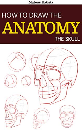 How to Draw the Anatomy: The Skull