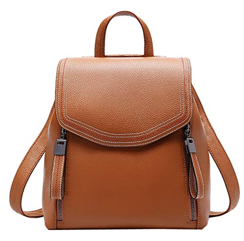 Heshe Women's Leather Backpack Casual Style Flap Backpacks Daypack for Ladies and Girls (Brown)