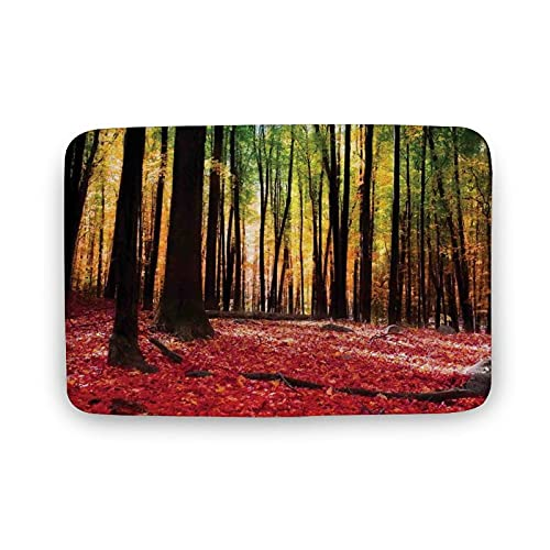 Home Decoration Doormat Nature,Warm Autumn Scenery in Forest Sun Rays Through Trees Image Print,Dark...