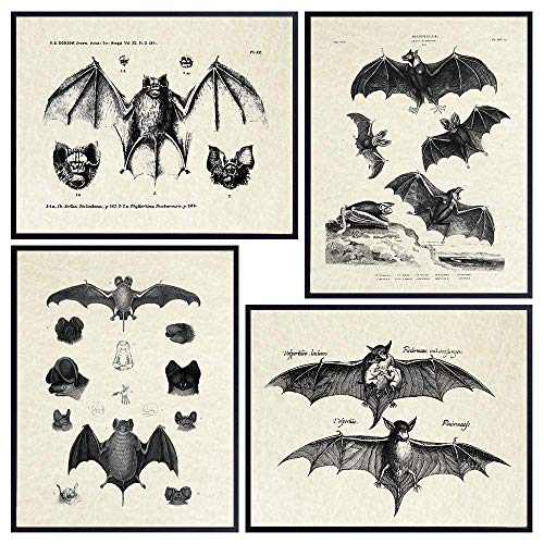 Bats Wall Decor - Vintage Retro Hipster Goth Art, Home or Room Decoration - Gift for Gothic, Horror,...